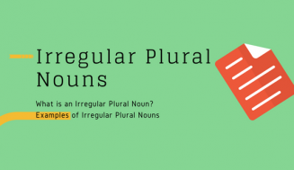 Irregular Plural Nouns (easy)