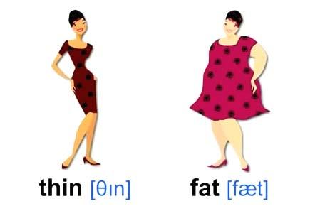 thin fat